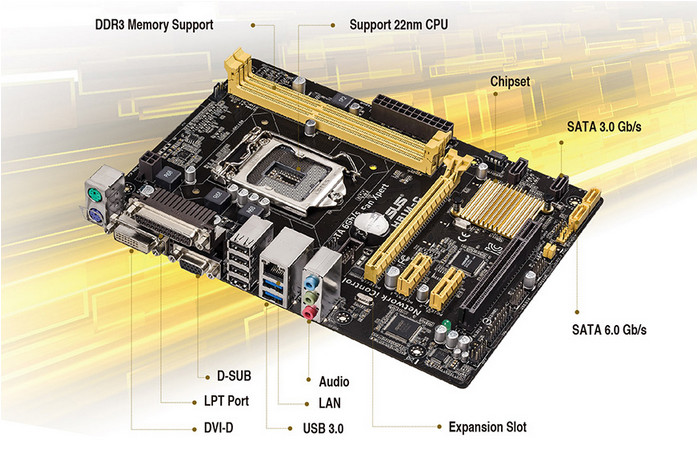 Motherboards Asus H81MC